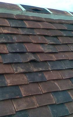 bat access ridges and tiles