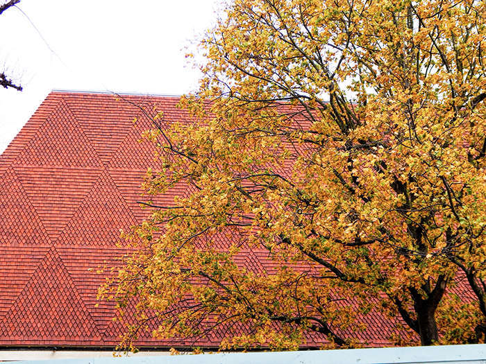 KCS Wimbledon music school roof